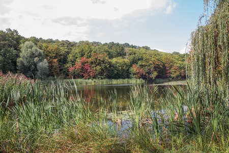 Autumn lake view in a park. Landscape. First touch of bright seasonal colors