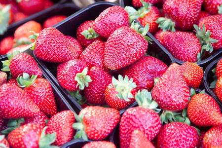Big size strawberriies in an organic market. Fruit is full of vitamin and healthy desset. First red berries for spring season