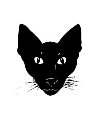 siamese: Siamesischer Katze  Illustration
