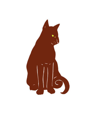 persian cat: red cat