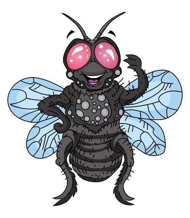 fly cartoon: Fly Cartoon Illustration