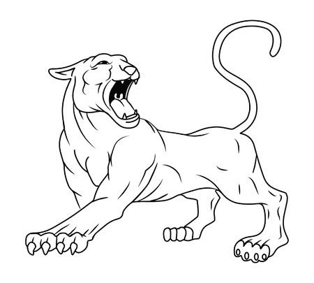 cougar: Panther Illustration