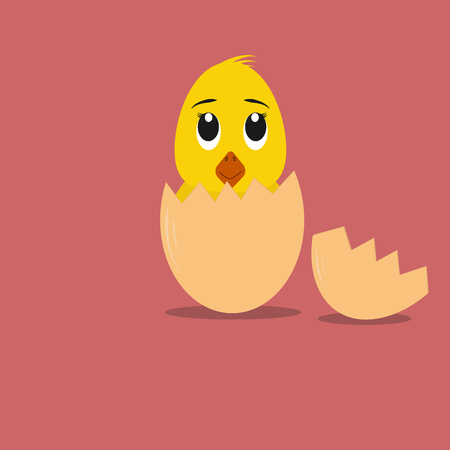 hatched: Fluffy little cartoon chick hatched from an egg Illustration