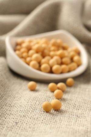 Soybeans in white ceramic bowl on sackcloth background