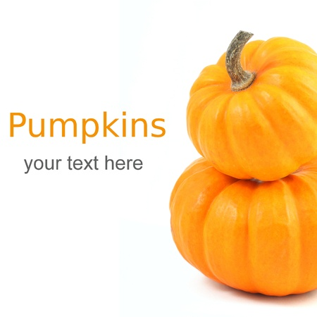 Two stacked mini pumpkins over white with sample text