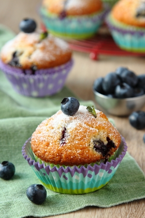 Delicious homemade blueberry muffins with fresh blueberries photo