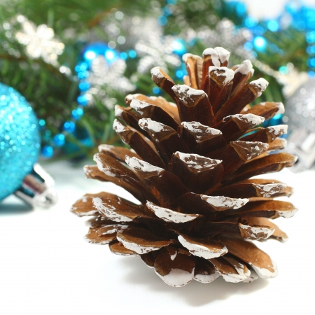 christmas, pinecone Stock Photo - 22010286