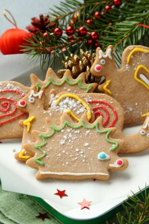 Homemade christmas animal-shaped cookies with festive decorations. Stock Photo - 22969319