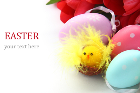 Little chicken, colorful easter eggs and pink tulips with sample text