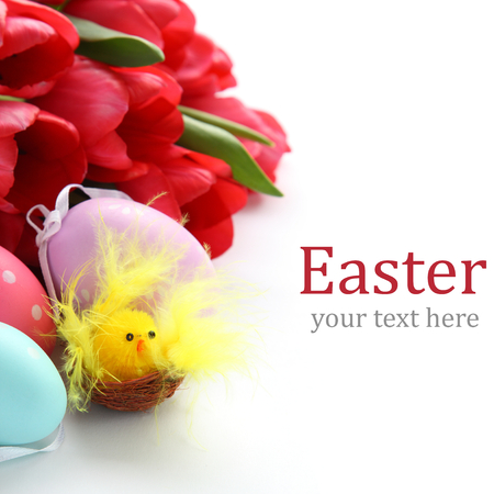 Little chicken, colorful easter eggs and pink tulips with sample text photo