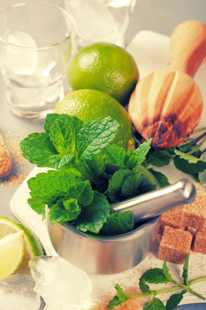 boozer: Ingredients for making mojitos Stock Photo