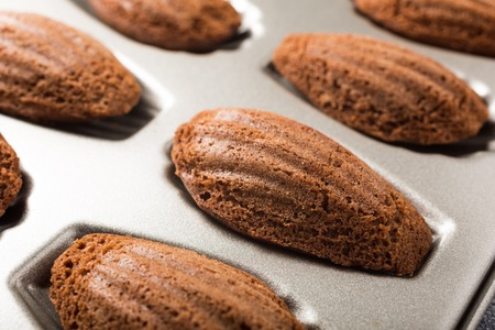 madeleine: Homemade chocolate madeleines cookies in a special madeleine mold, selective focus