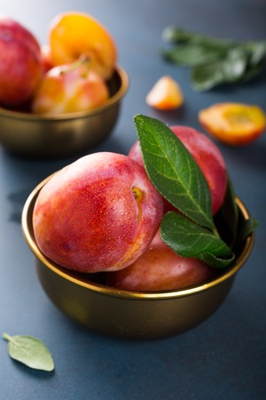 bronze bowl: Fresh plums in bronze bowl on blue stone background. Selective focus. Healthy food concept.