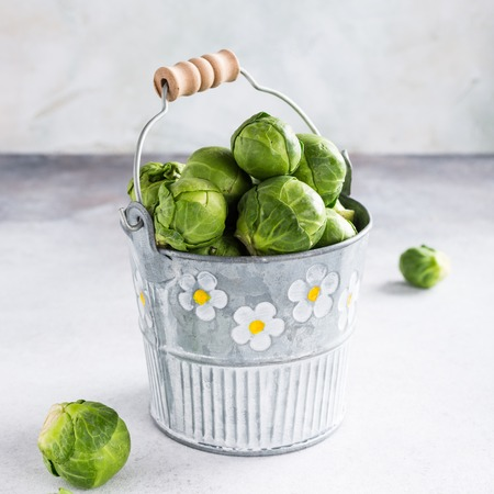 Fresh Brussels sprouts in metal bucket on light gray stone table. Healthy food concept with copy space.