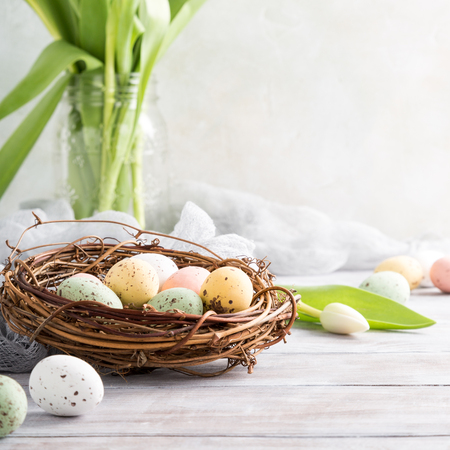 Easter composition of colorful quail eggs in the nest and white tulips on the light wooden background. Holiday concept with copy space. Banque d'images