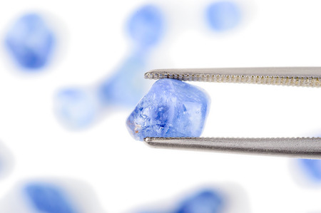 gemological: Blue natural raw and uncut sapphire crystal  One held by tweezers