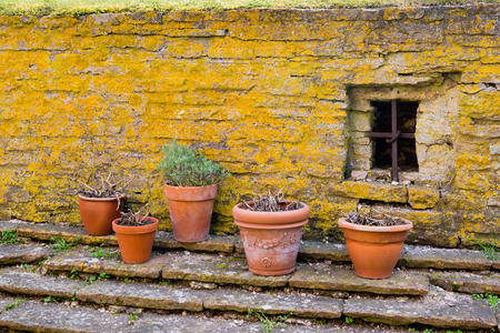 Ceramic pots by an old lichen filled yellow stone wall with bared window  photo