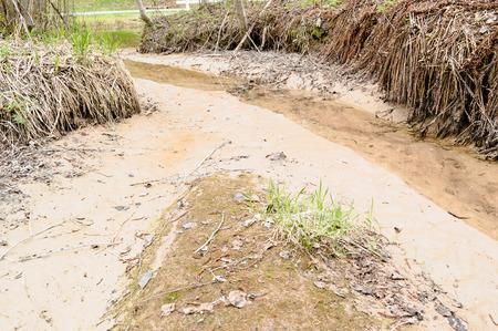 silt: Fine silt eroding along small creek in ravine landscape.