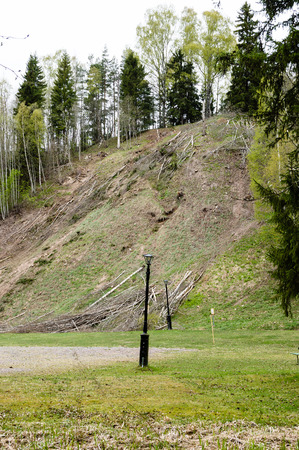 silt: Trees being cut down to slow down eroding of silt in ravine landscape.