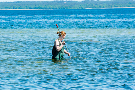education in sweden: Kalmar, Sweden - May 26, 2014: Female in water with ring net examining the Baltic Sea for ecology education.