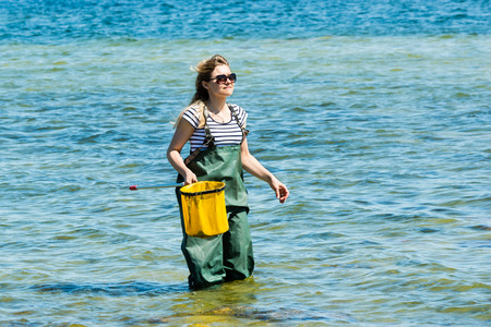 rubber ring: Kalmar, Sweden - May 26, 2014: Female in water with ring net examining the Baltic Sea for ecology education.