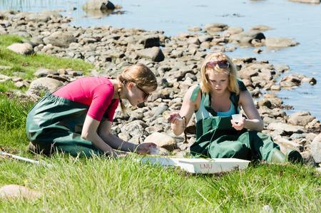 Kalmar, Schweden - 26. Mai: Studentinnen auf Ökologie, Biologie Exkursion in marinen Lebens studieren.