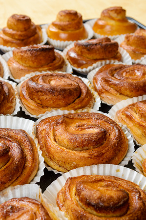 Ready to eat cinnamon buns directly from the oven. Tasty and perfectly baked. photo