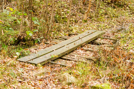 Old wooden footpath over moist area in the forest. Newer planks on top of older ones that are rotten.