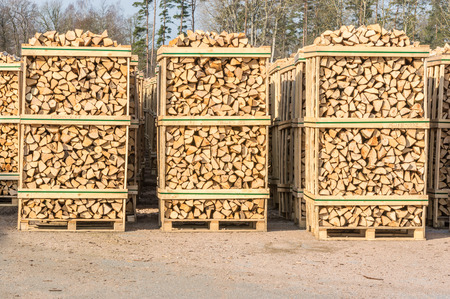 co2 neutral: Solid biofuel as fire wood made of birch, stacked on pallets in outdoor stock. Stock Photo
