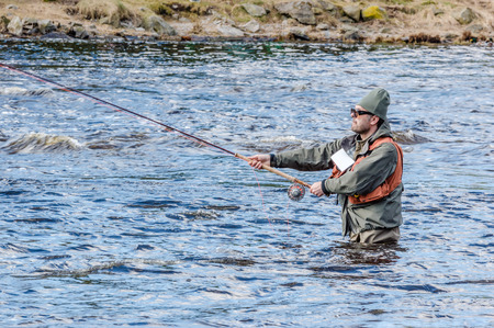 gripping: MORRUM, SWEDEN - MARCH 28, 2015: Unknown person fly fishing for trout or salmon on premiere day. Person gripping rod with both hands. River bank in background. Hip deep in water.