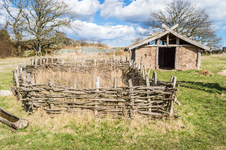 fenced in: Part of viking age village replica in southern Sweden in early spring. Small farm fields are fenced in with juniper branches for protection against farm animals. Clay house in background.