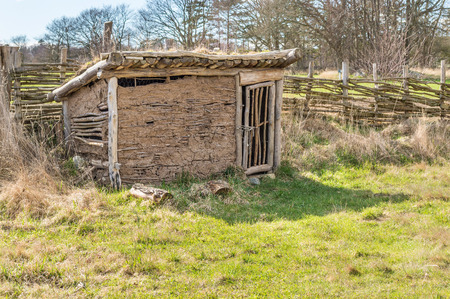 henhouse: Part of viking age village replica in southern Sweden in early spring. Henhouse made of clay and juniper branches. Door closed, fence in background.
