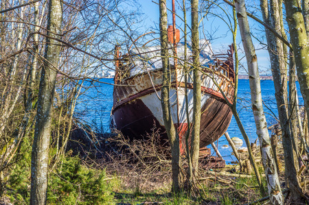 front end: The front end of an old passanger ship, now wrecked and pulled on shore. Nature is closing in. Fine blue sky and vegetation all around. Stock Photo