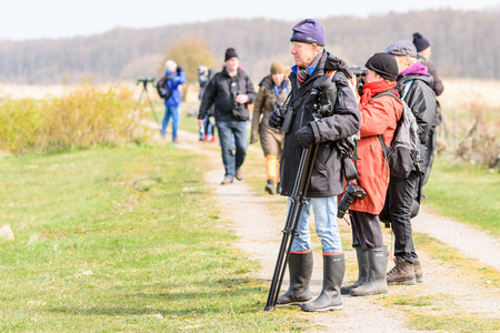 migratory: Bejershamn, Sweden - April 25, 2015: Birdwatchers looking after migratory birds in wetland as they arrive in early spring. Bejershamn is a protected wildlife reserve known for its birdlife.