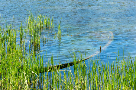 sunken boat: Sunken wooden boat fully submerged under water in the reeds. Stock Photo