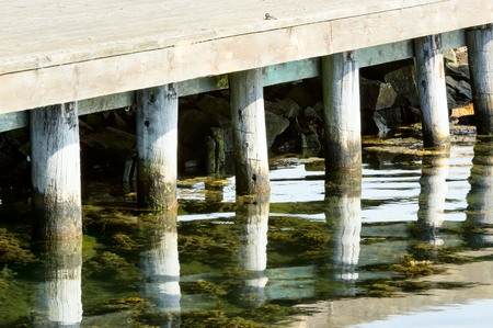 mirrored: Wooden poles support the bridge above. Here are some poles that are reflected or mirrored in the water.