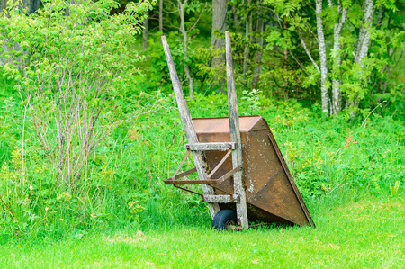 tarnish: Rusty old wheelbarrow in green surroundings. Wooden handles and metal hull. Lichen grows on handles.