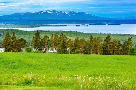 fells: View overlooking a lake in the Swedish fells. Field with grass and forest in front, lake in middle and mountain peaks in back.