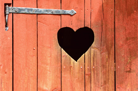 toilet door: Outdoor toilet door with carved heart below iron hinge. Old traditional marking for outhouses in Scandinavia. Heart also serve as window or inspection hole.