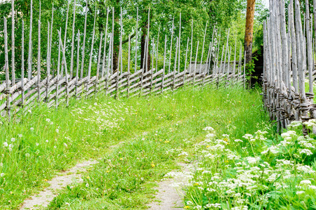 traveled: A road less traveled with vegetation and tracks. At sides are traditional fencing made of unpainted spruce. Roof of small building in background.