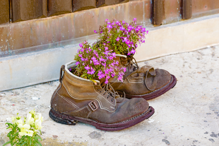 A pair of old used boots up cycled as flower pots with lovely purple flowers in them. Boots are worn and weathered with a lovely patina to them. Recycle at its best. Stok Fotoğraf - 44635344
