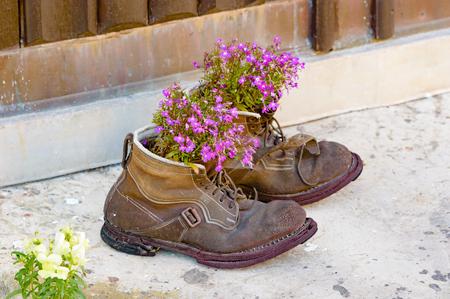 Een paar van de oude gebruikte laarzen omhoog gefietst als bloempotten met mooie paarse bloemen in hen. Laarzen zijn versleten en verweerd met een mooi patina aan hen. Recyclen op zijn best.
