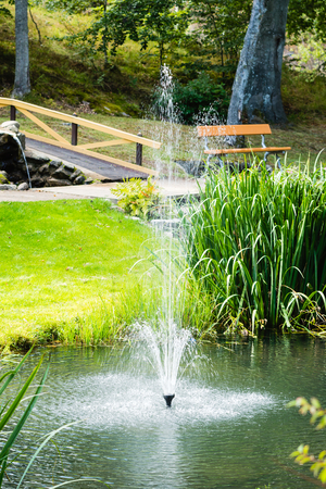 no person: A lovely small water fountain in a public park. Water is surrounded by ornamental plants and grass. No person visible. Weather is sunny and calm. It is late summer. Stock Photo