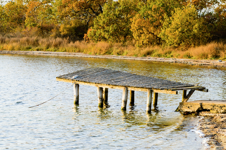 falling apart: An abandoned old wooden pier that is slowly falling apart in the sea. Colorful autumn trees in background. Stock Photo