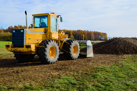 front loader: A parked front loader in front of a large pile of potatoes on a farmers field. It is autumn and the trees in back are colorful. It is harvest time for potatoes.
