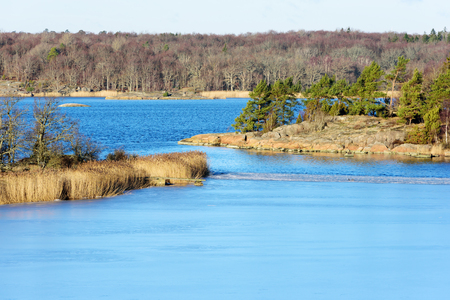 shrubbery: Small islands and islets in winter landscape, Bare rocks mix with forest, shrubbery and reeds as the ice slowly grow or melt in the calm sea. Karlskrona Sweden. Stock Photo