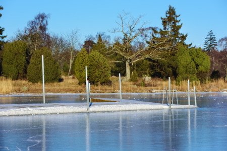A swimming dock or bathing pier has frozen solid in the sea ice at winter. Seen from the sea with the main land in background. Juniper bushes and an oak tree visible on land.