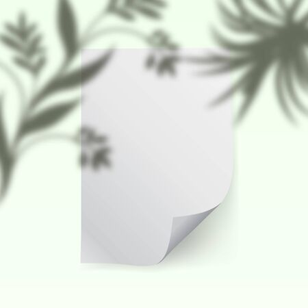 An empty shredded sheet of paper with a shadow of vegetation. Template for design. Photorealistic vector illustration. Иллюстрация