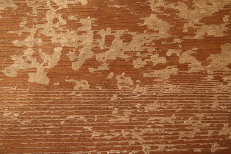 overbuilding: Texture of wooden wall