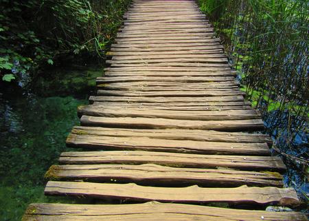 wooden footbridge on a lake